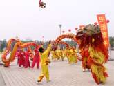 烟台舞龙舞狮队表演和会议服务